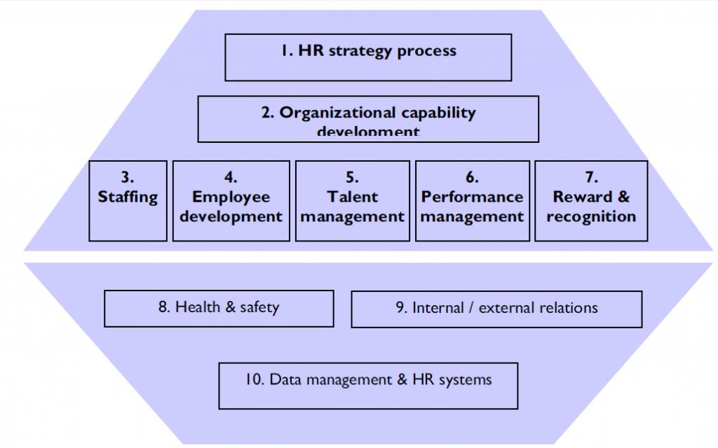 کلان فرایند سرمایه انسانی